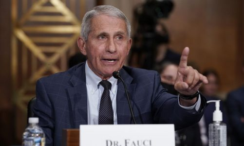 Fauci offers his OK on Halloween fun: 'You can get out there'